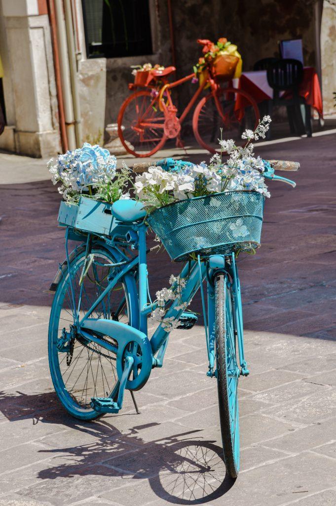 chioggia rower
